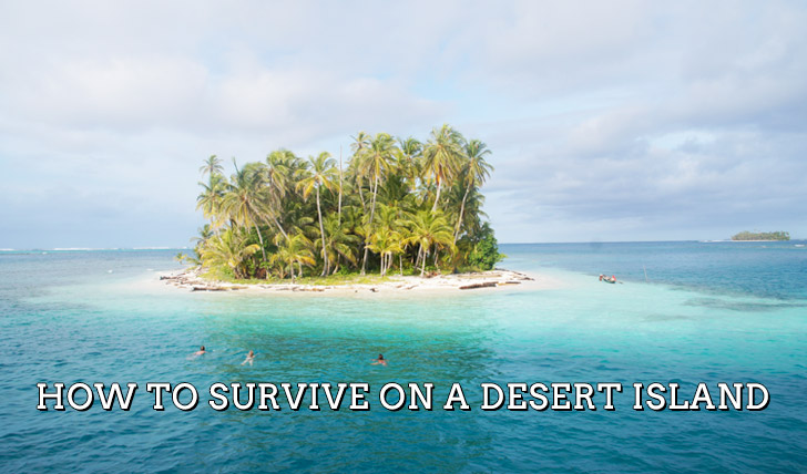 alone on a desert island essay Descriptive writing prompt: deserted island 0 being washed ashore on a strange or deserted island is one of the most popular ideas in literature and pop culture.