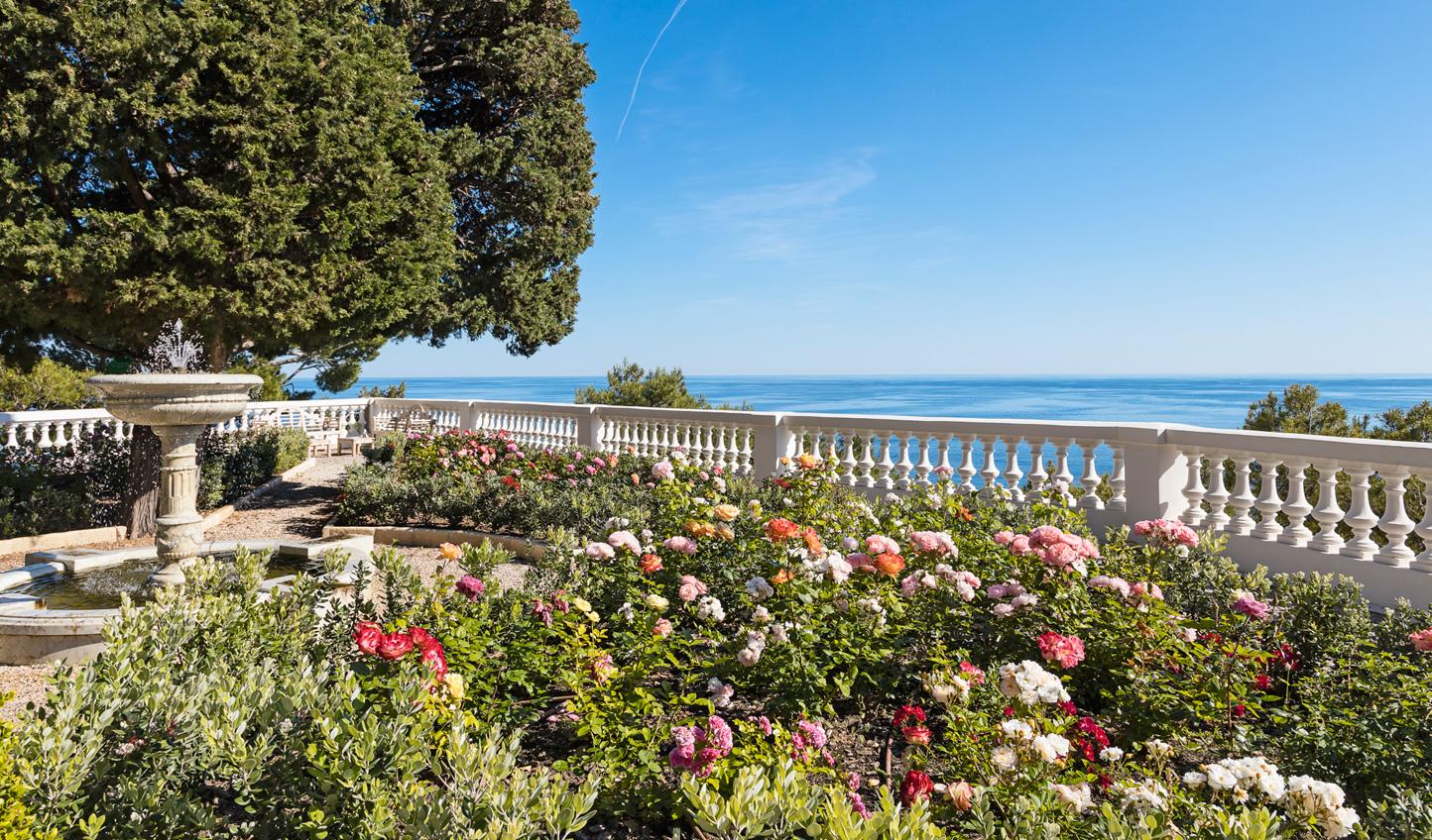 Take a stroll through the rose garden