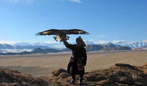 Mongolia hunt with eagles