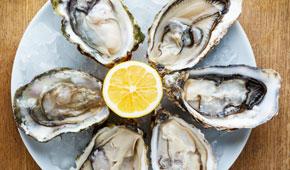 Shuck Oysters in Ston Croatia