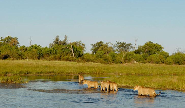 Holidays in Botswana