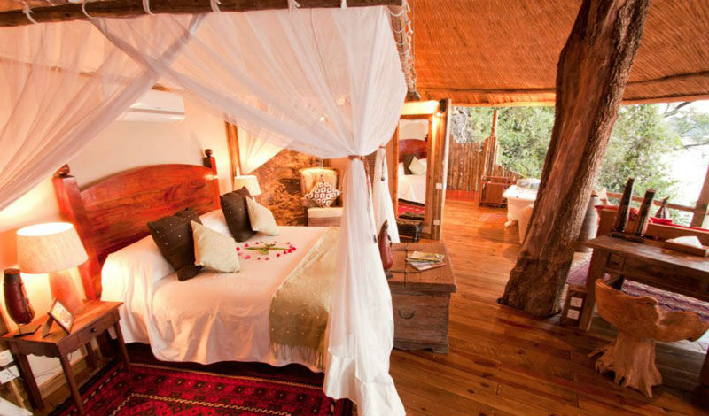 Your tree house room at Tongabezi