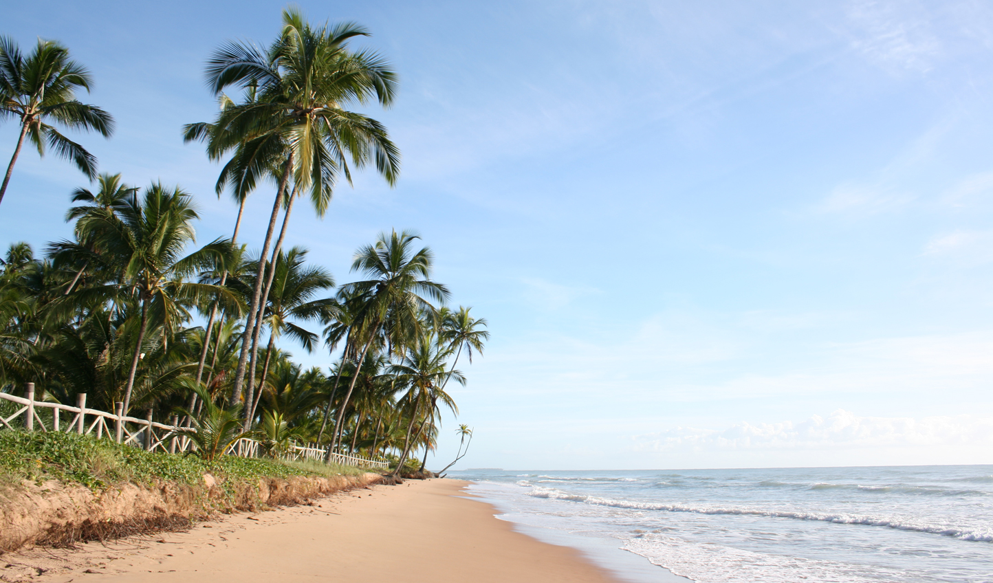 Settle down on the beaches of Bahia
