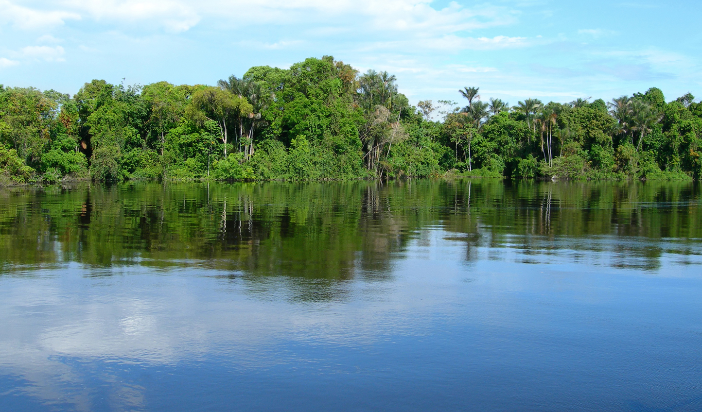 Canoe down the Rio Negro