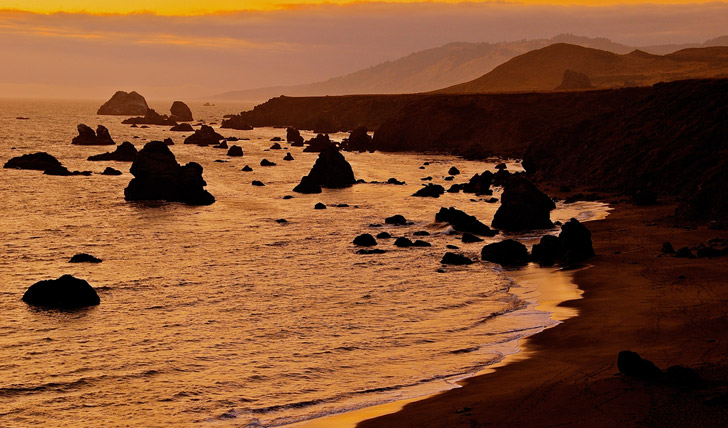 Sonoma's rugged coast