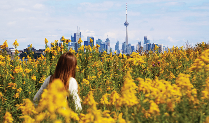 The Toronto Skyline, Canada