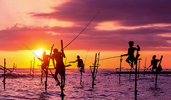 Fishermen on stilts | Sunset in Sri Lanka
