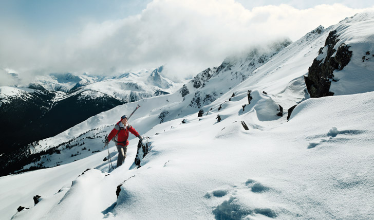 Explore the wilds of Whistler