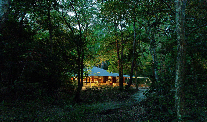 Your remote jungle home
