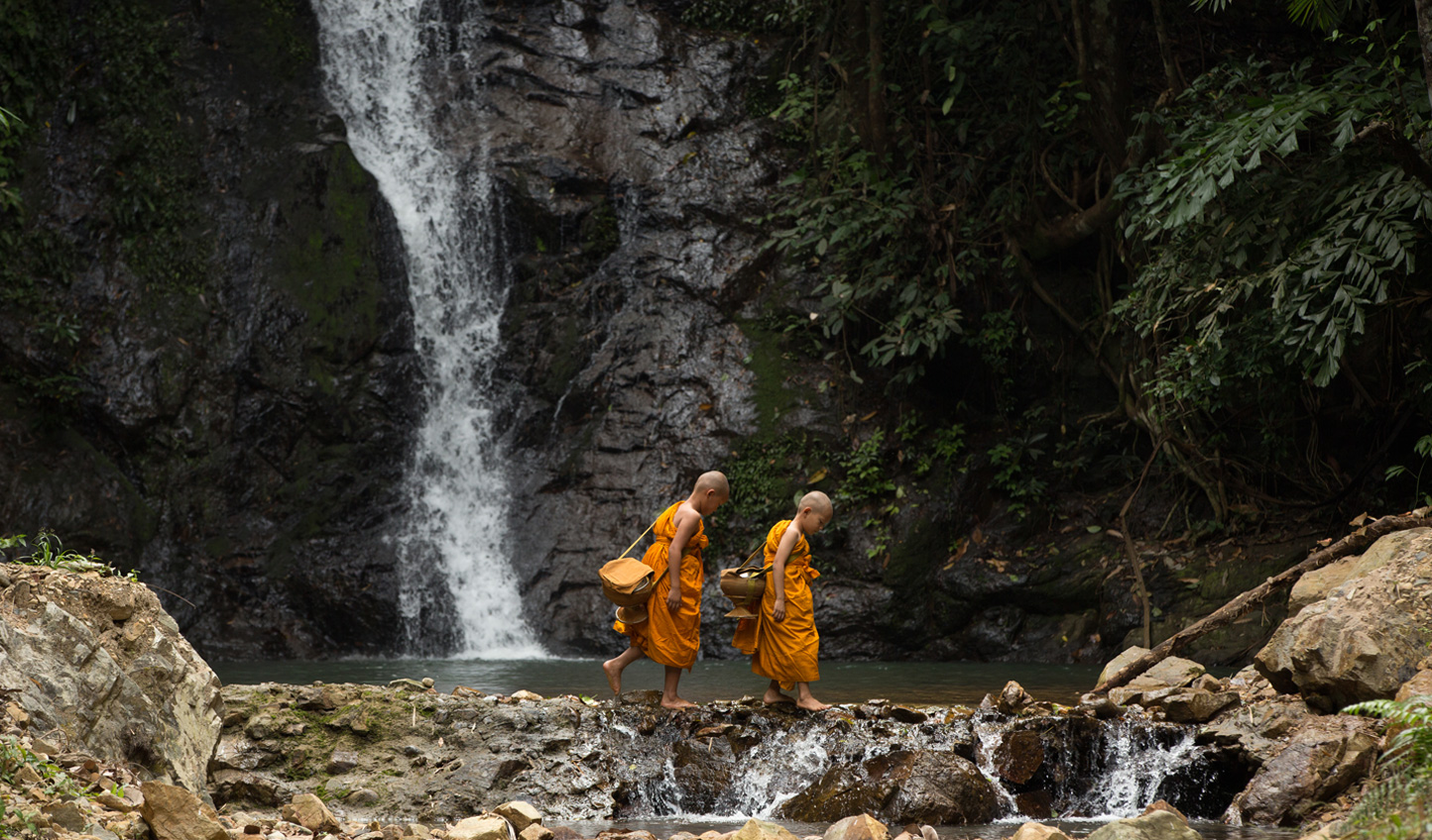 Saffron-robed Buddhist monks