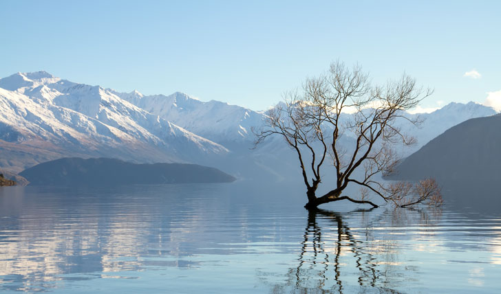 Enchanting Lake Wanaka
