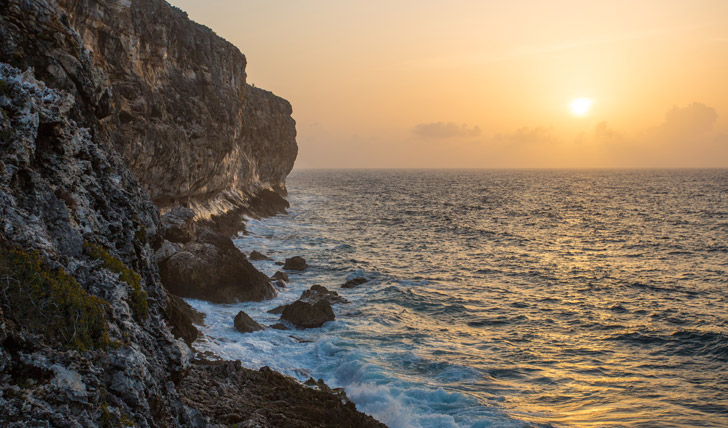 Rugged limestone coast, Cayman Brac