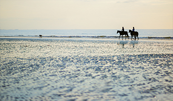 Riding on the beach in Deauville, France | Inspired by Experience