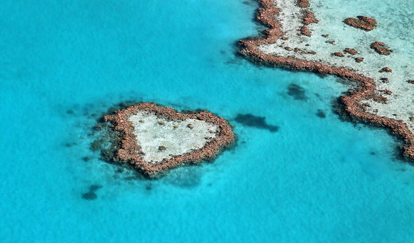 Fall in love with the Great Barrier Reef