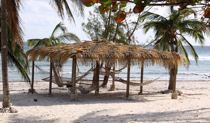 Beach life on Little Cayman