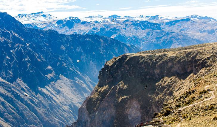 View Condors over Colca Canyon