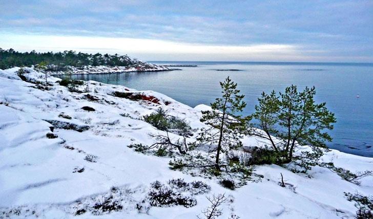 Snow at Havsvidden