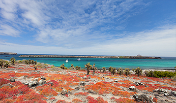 The Galapagos Islands | Inspired by Experience
