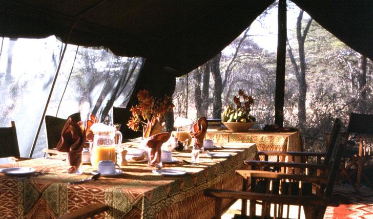 Tanzanian Luxury Safari