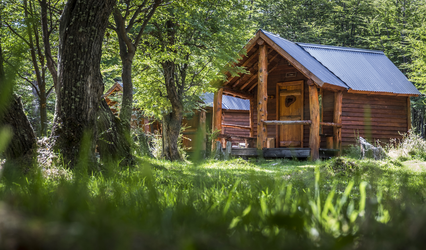 Your cosy cabin in the woods