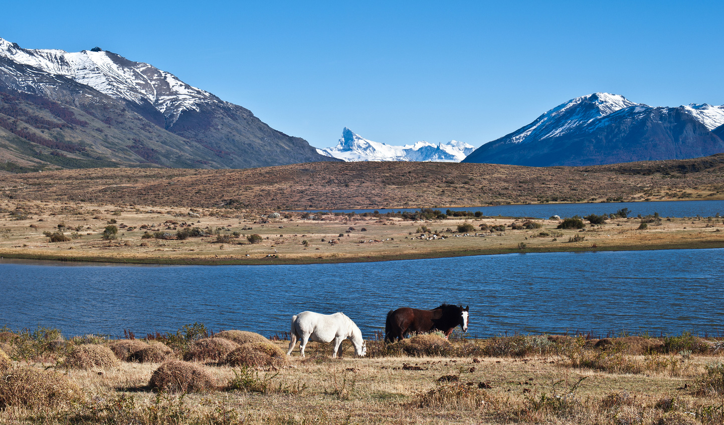 Saddle up and explore Patagonia by horseback