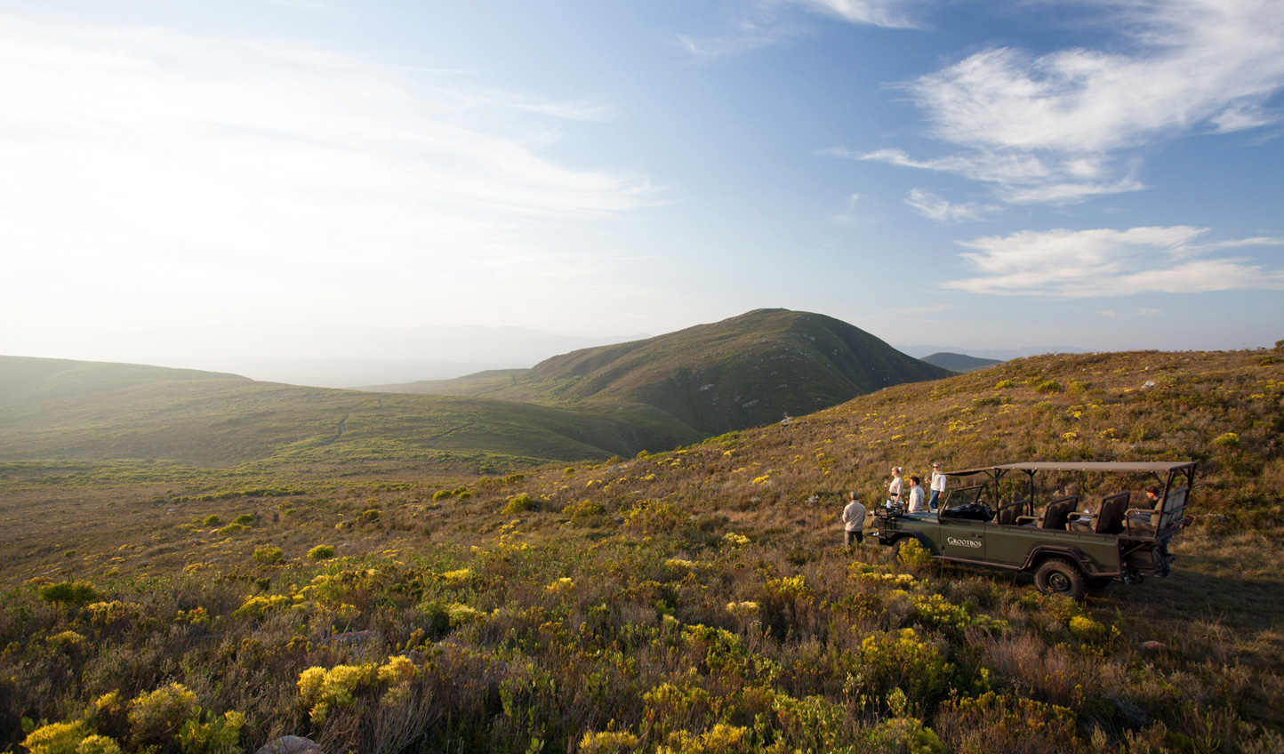 Head out over the hills on a Grootbos safari