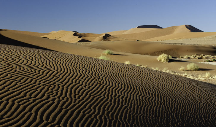 Desert Safari, Kulala Desert Lodge