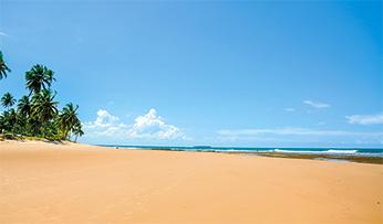 A deserted beach in Bahia, Brazil