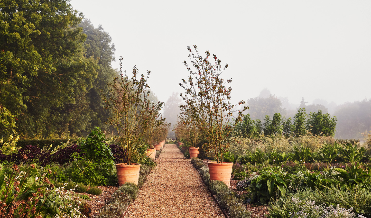 Take a stroll through the Kitchen Garden before your cooking class