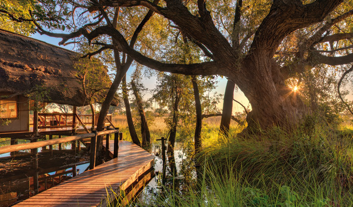 Unwind at Belmond Eagle Island Lodge