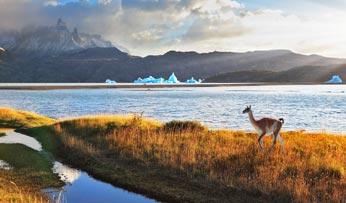 Chilean landscapes