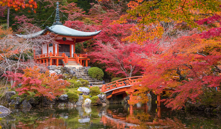 The colors of Kyoto