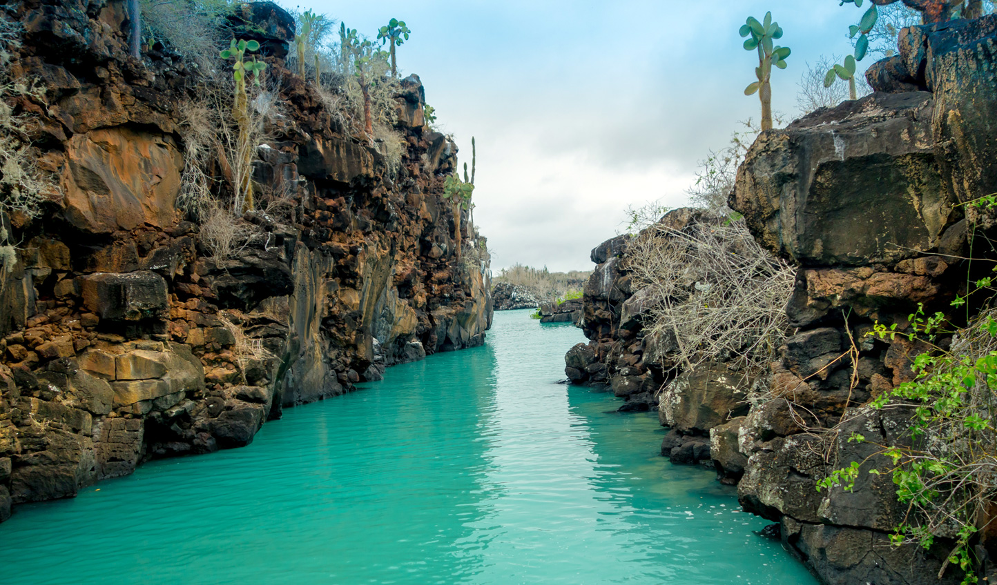 Visit Las Grietas, a geological canyon formation on the Galápagos Islands