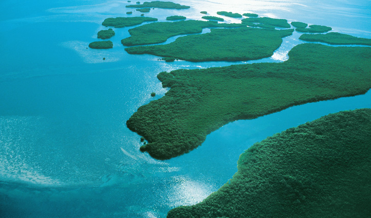 Big Pine Island, Florida Keys, USA