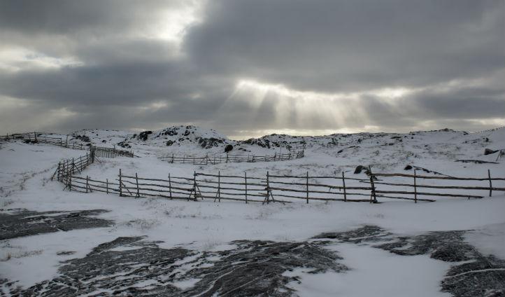 Snowy landscapes across the island - Photo © Alex Fradkin
