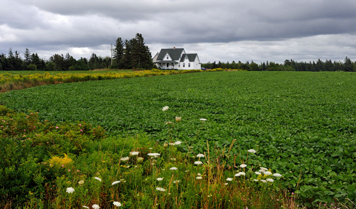 An old house on Prince Edward Island, Canada