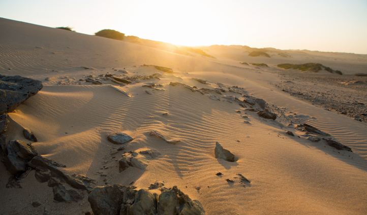 The sun shines over sand dunes in Colombia