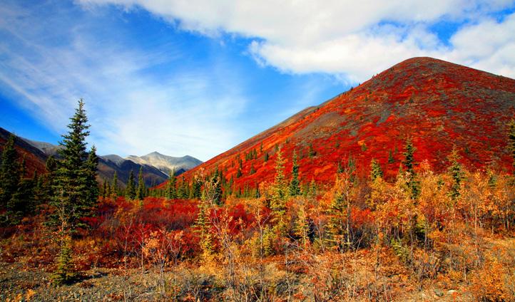 Summer Landscape, Northwest Territories.