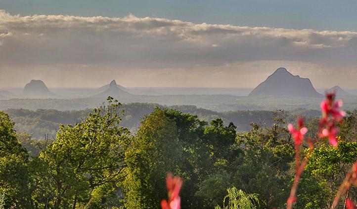 Maleny Botanical Gardens, Queensland