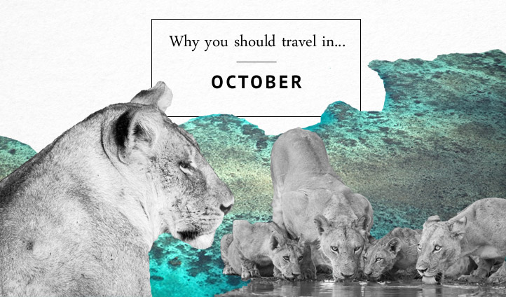 Where to travel in October | Black Tomato