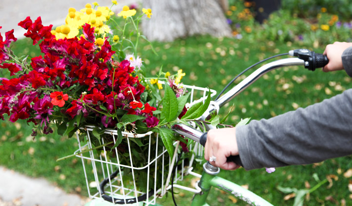 Cycling with flowers