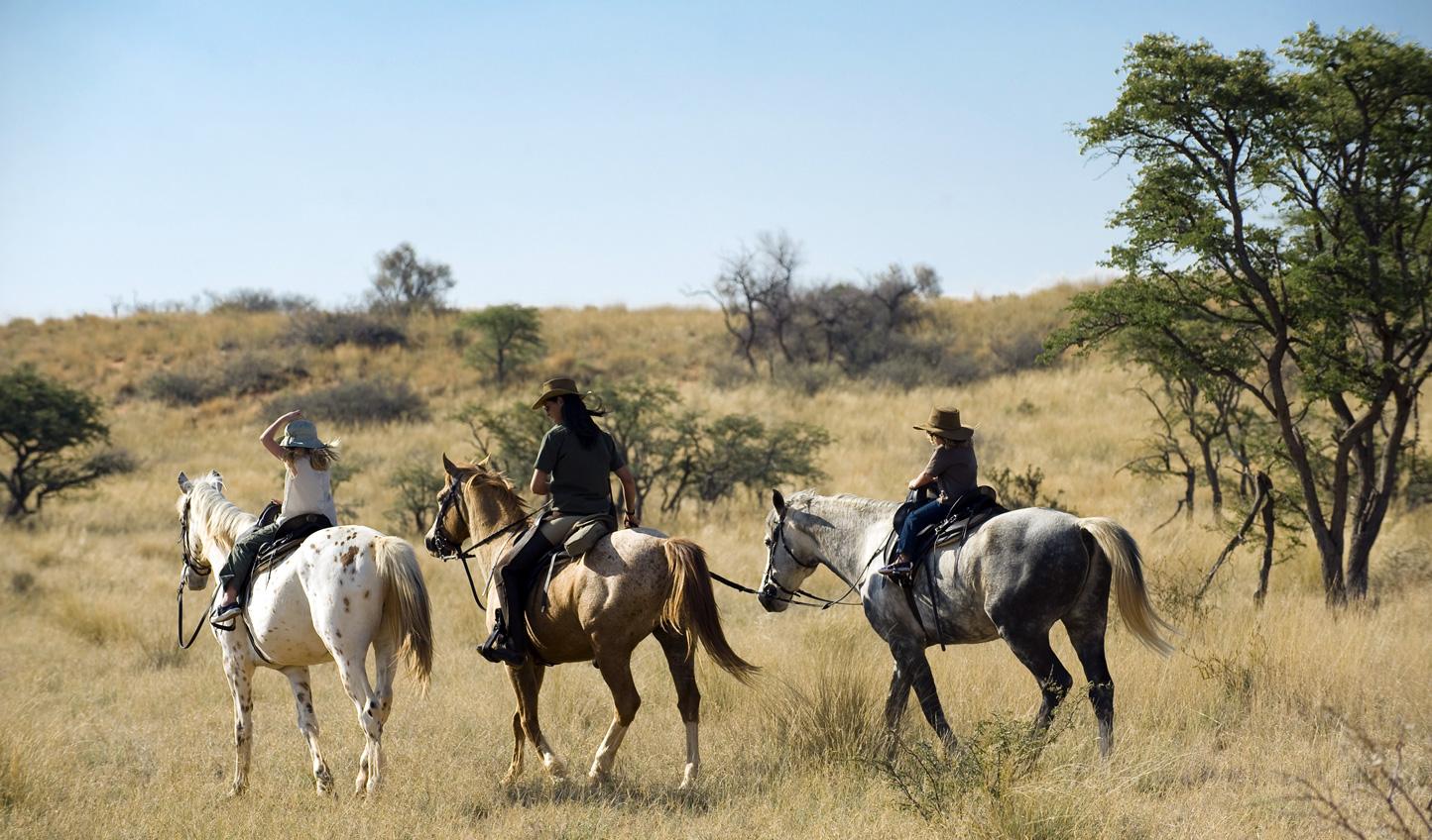 Saddle up on a horseback safari