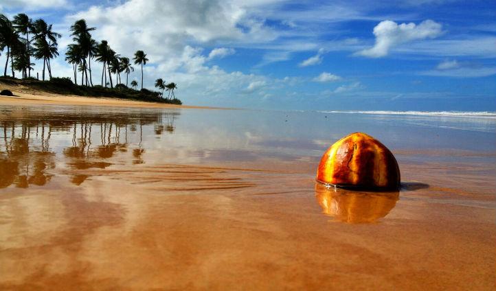 Take a trip down to the breath taking beach