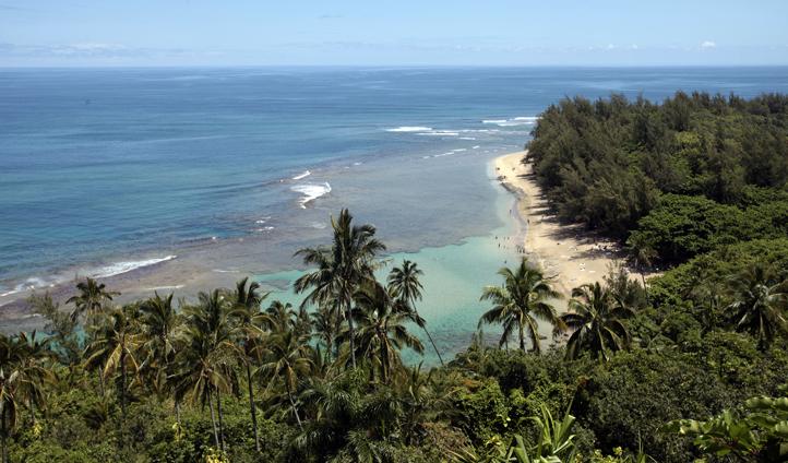 Visit the Kauai's-shoreline