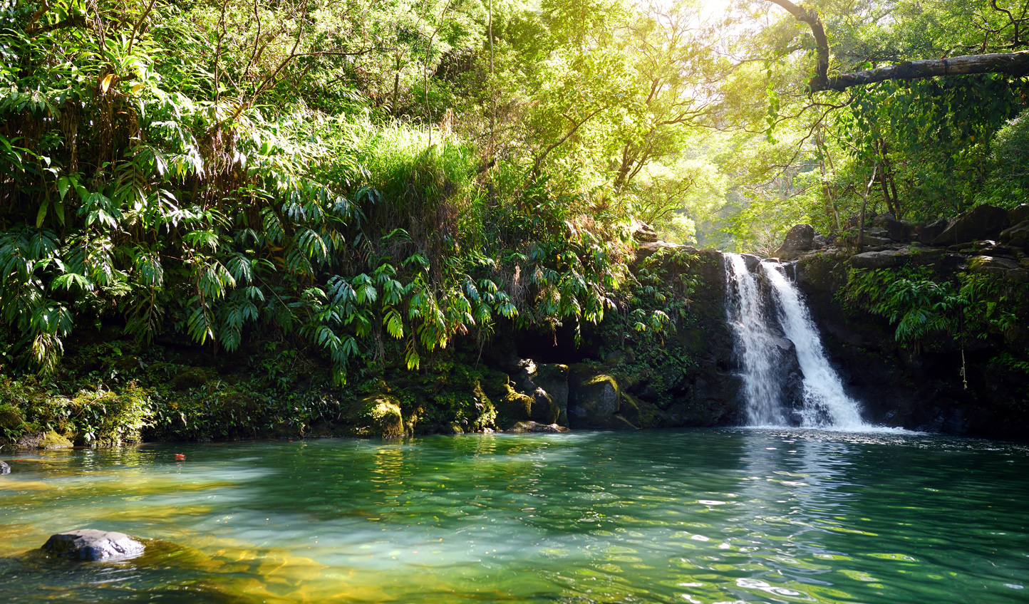Discover hidden natural beauty in Hawaii