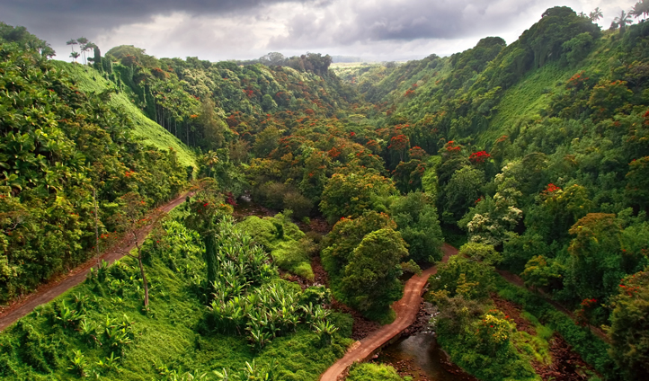 Hit the hiking trails in Maui