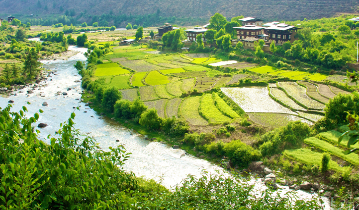 Continue your adventure over-looking the rice fields and snaking rivers of Punakha