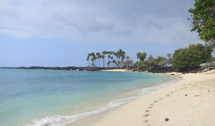 white sandy shores hawaii