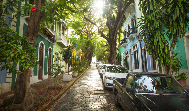 Tree lined streets in San Juan, Puerto Rico
