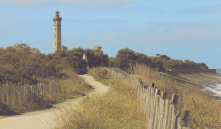 Stroll the coastal paths of the Ile de Re